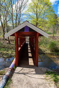 Town Brook Trail-2108