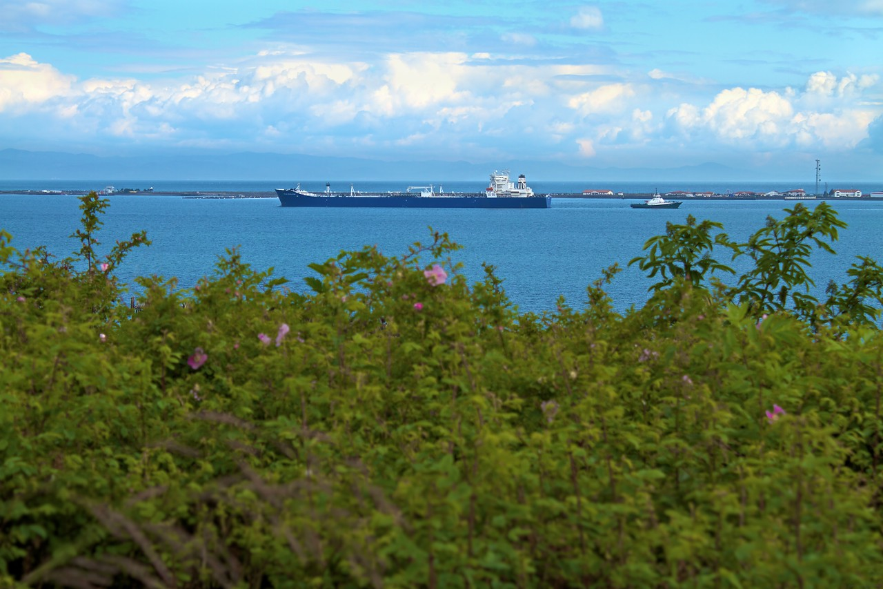 One of the many ships and barges parked off the coast of Port Angeles.