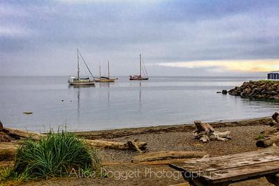 Sailboats at Port Townsend