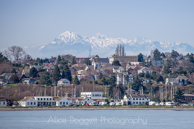 The Olympics Over Port Townsend
