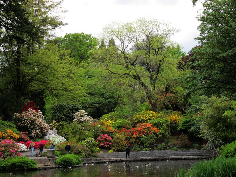 1617 Crystal Springs Rhododendron Garden