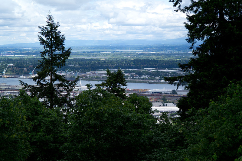 2313 Willamette River