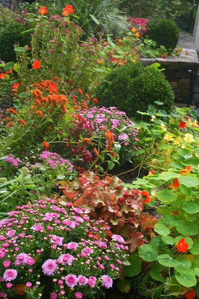 The October garden
