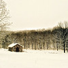 Turtle Barn in Winter, Pound Ridge