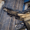 gargoyle at St. Vitus Cathedral