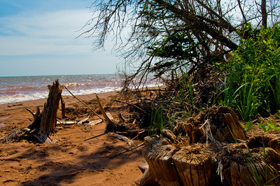 A secluded little beach area on Prince Edward Island