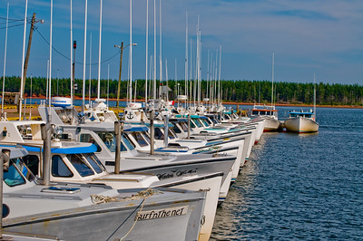A while fleet of lobster boats resting quietly at the dock.