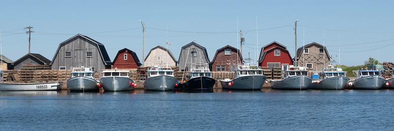 Malpeque Harbor