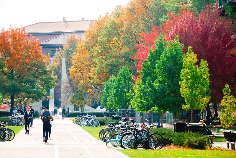 Fall Engineering Mall