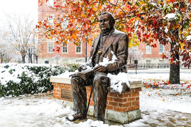 Snowy John