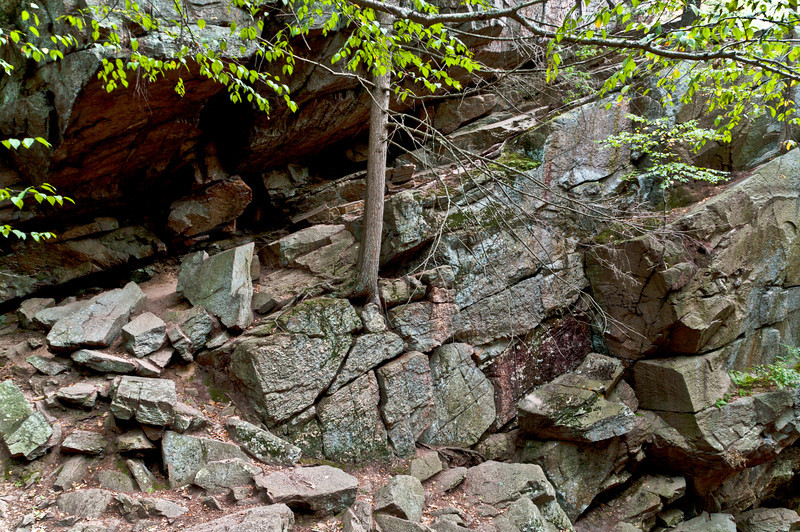 The slanted ledge by which I made my decent into the chasm.