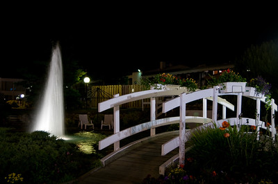Bigger water feature and a bridge