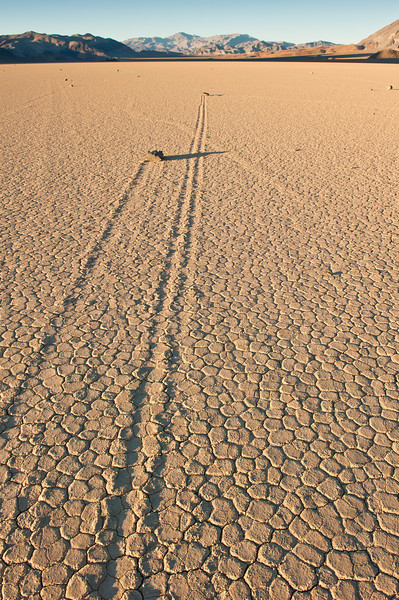 Long Distance Runners<br /> Racetrack Playa, Death Valley National Park<br /> California