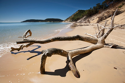 IMG_6040 Rainbow Beach, Cooloola Recreation Area, Great Sandy National Park
