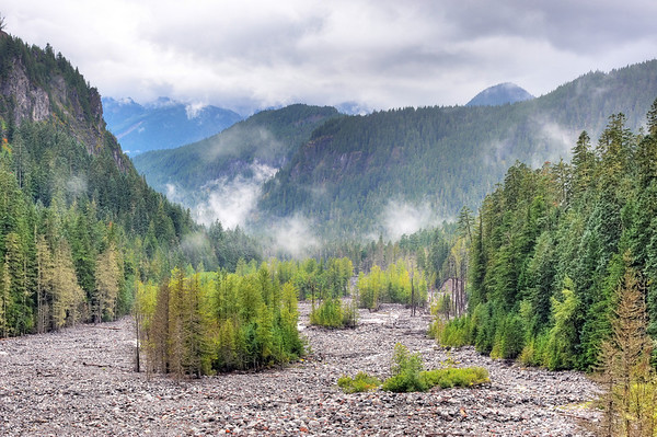 Nisqually River bed, Mount Rainier, Washington