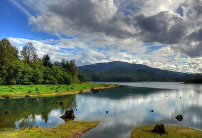 Alder Lake reflection