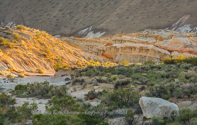 Canyon Wash at Sunset