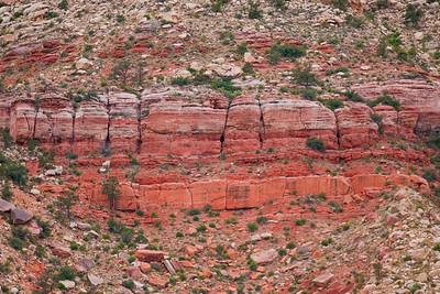 red rocks-05081