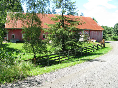 Bridge Lane off Highway 53 provides access to the barn and house. The barn measures 100 by 60 feet. The redwood tree in the center of this image is one of 15 thriving on the property ranging in age from 10 to 80 years.