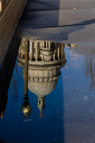 Reflection of the RI State House