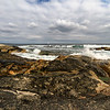 Beavertail State Park