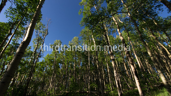 Sangre de Cristo Mountains, high above the Rio grande Valley near Santa Fe, New Mexico.