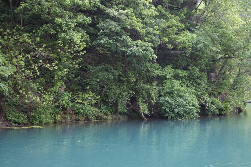 Roaring River Spring
