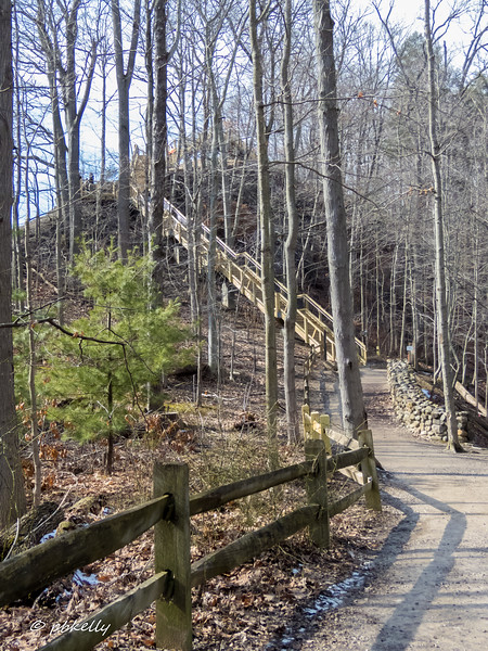 2-17-17.  Adding a new Preserve to my regular rotation.  This is Rocky River Preserve in Olmsted Falls.  It is the nearest place with hills!  Today I tried the 522 Earthworks steps and it did get my heart rate up!  The Woodpeckers are really noisy, and the Chickadees eat out of your hands.