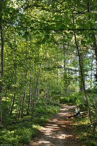 Wanderung durch den Wald am Steilufer / Hiking through the woods on the high shoreline