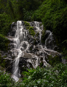 Nyungwe waterfall