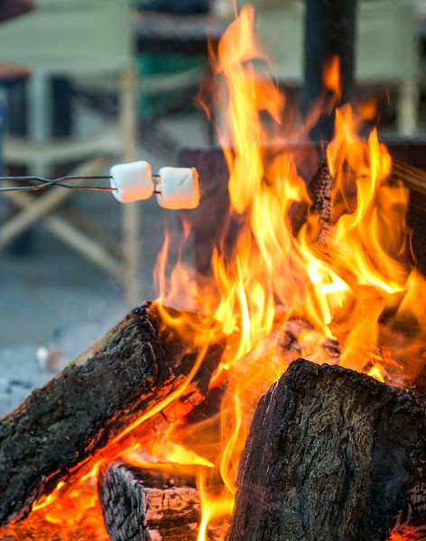 After Dinner Marshmallow Roast