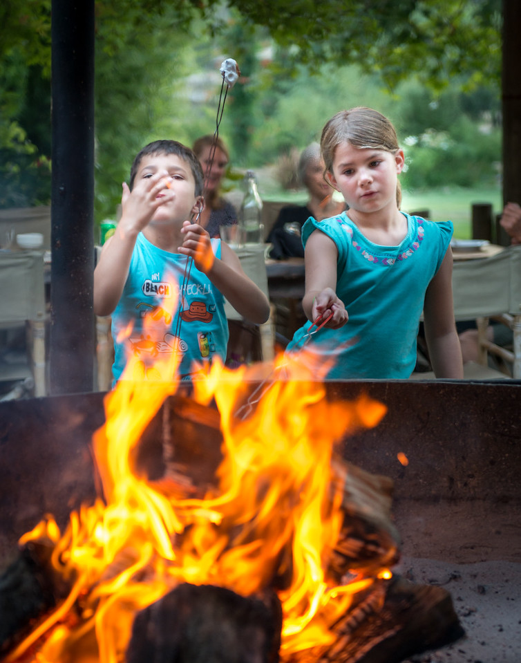 Children Roasting Marshmallows In BBQ Pit
