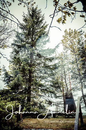 Sahan kylä Halikonjoki