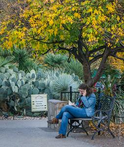 Alamo Garden
