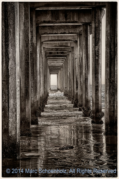 Mesmerizing view under . . .  Scripps Pie - Black and White