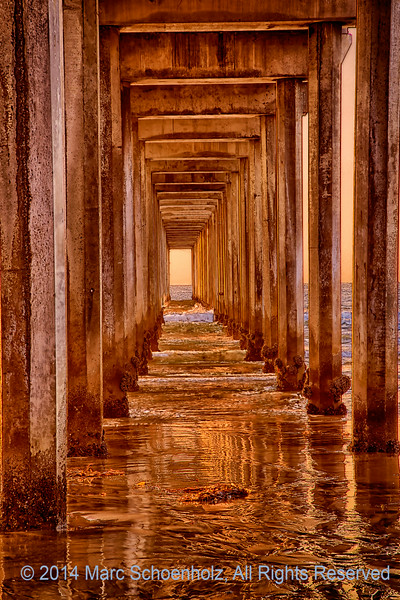 Mesmerizing view under . . .  Scripps Pier