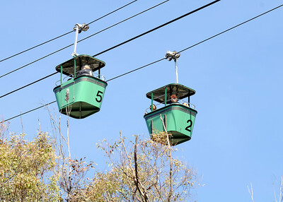 Skyfari @ San Diego Zoo