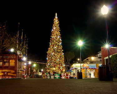 Christmas Tree at Pier 39 ref: dc84d2fb-8ca5-4167-931f-fd2c41219dc9