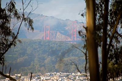 The bridge viewed from Mount Sutro