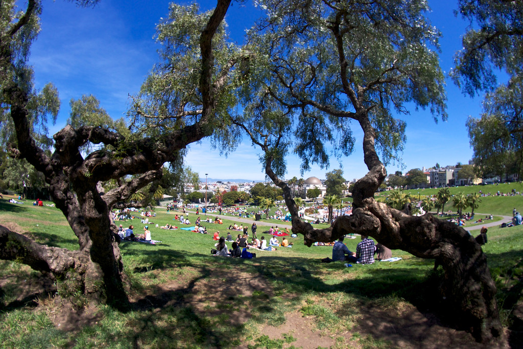 Sunday afternoon at San Francisco's Dolores Park