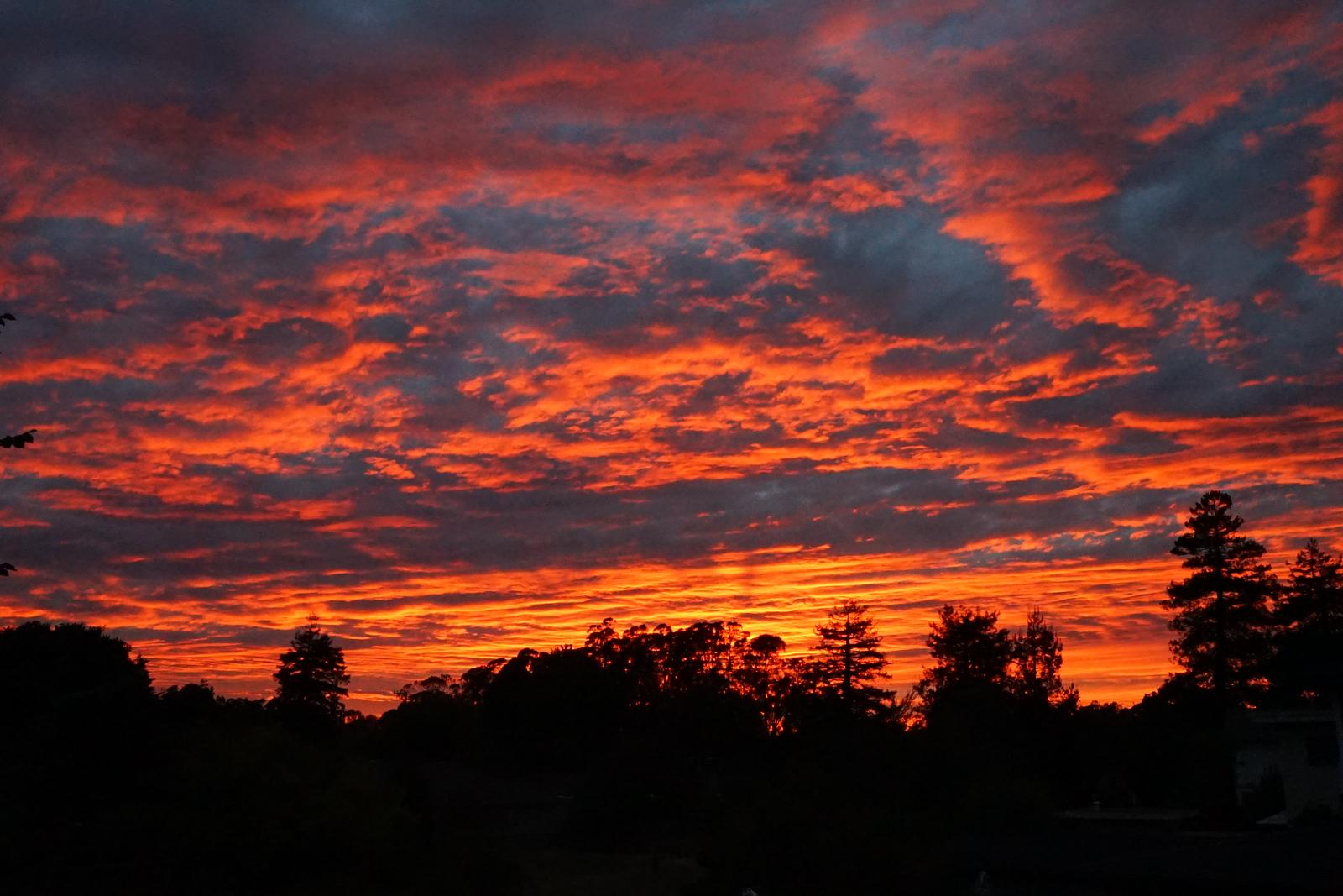 Rooftop Sunset in Santa Cruz