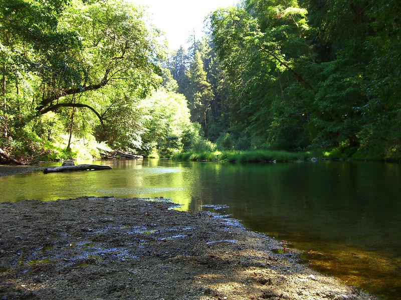 San Lorenzo River, Henry Cowell