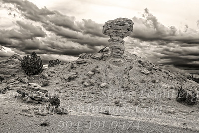 Rock in a Hard Place - B&W Copyright 2016 Steve Leimberg - UnSeenImages Com _M1A8629