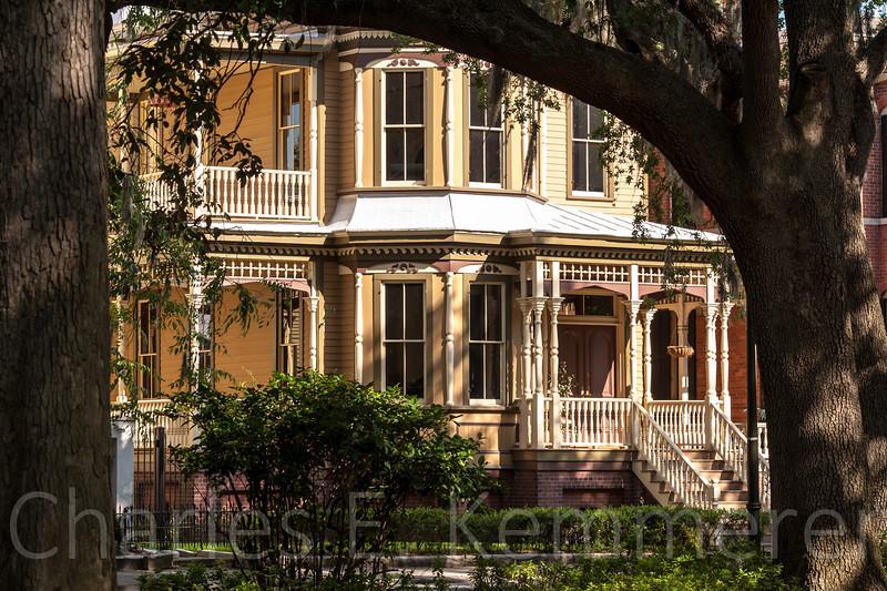 Savannah-1181