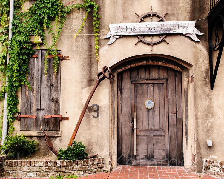 Savannah-1265