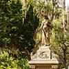 Savannah-1304