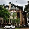 Savannah-1257