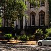 Savannah-1375
