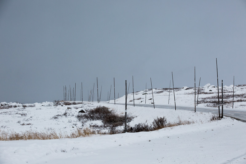 Snow Poles and Ominous Sky