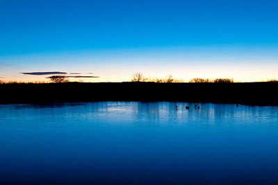 Frozen Pond sunrise, Bosque Del Apache Wildlife Refuge, New Mexico 2009